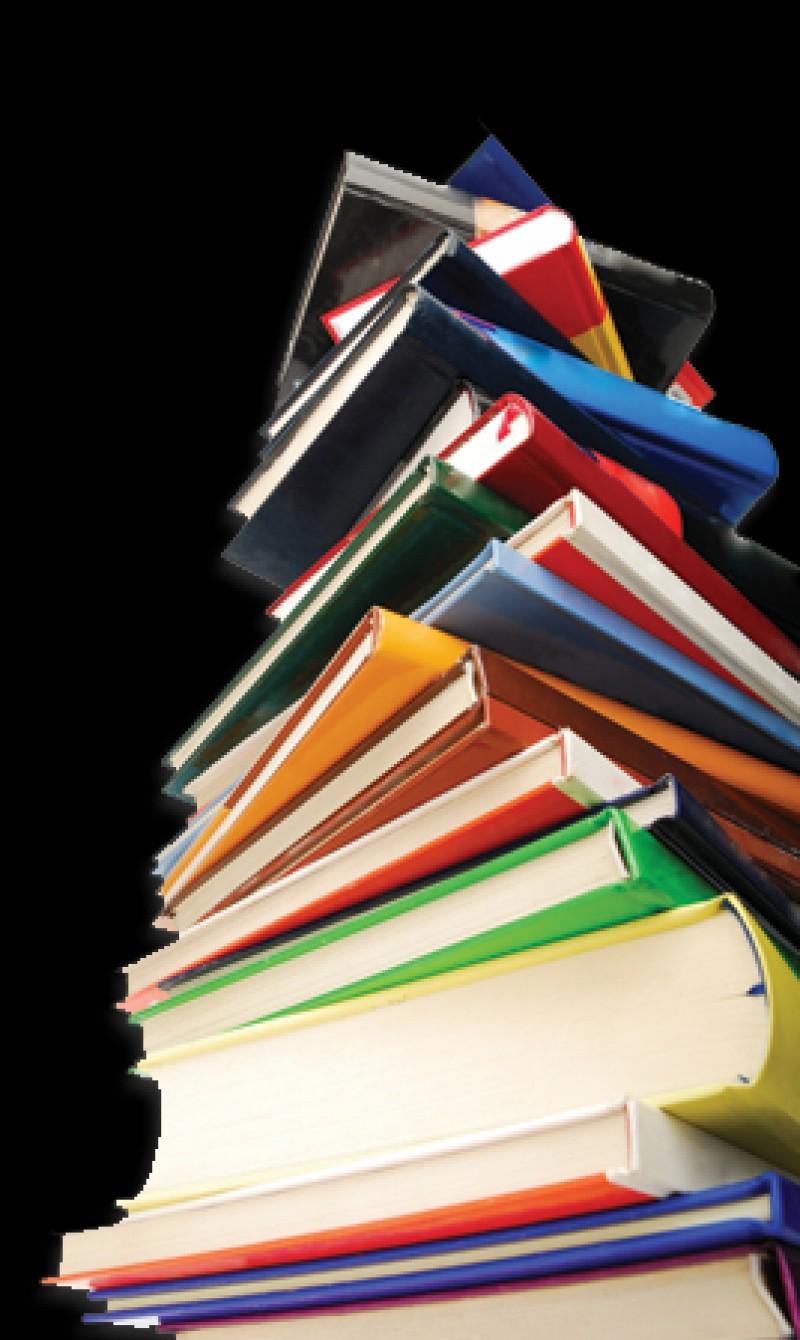 Bgestión: Catalogación Bibliotecaria