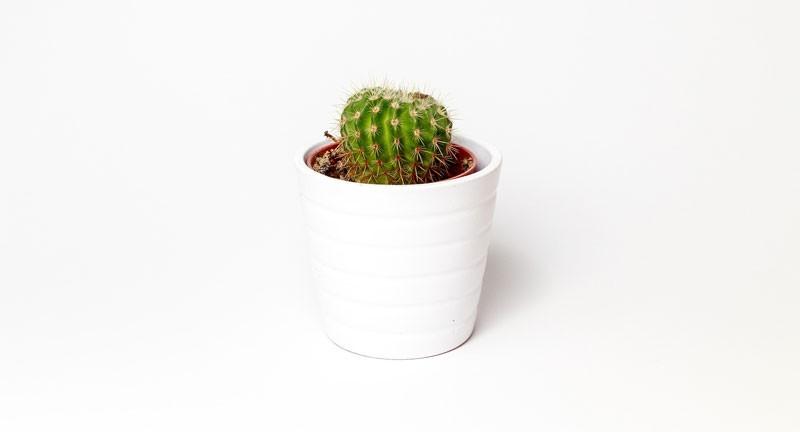 El diseño minimalista