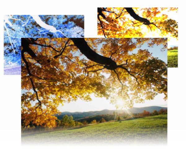 Mejoras tecnológicas para las imágenes en la web