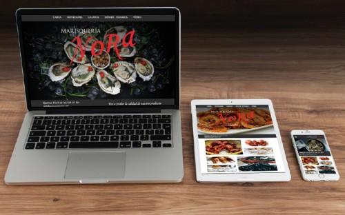 Nueva Web Responsive desarrollada por Anasaci