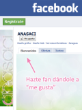 Diseño gráfico para la página de Facebook (fan page)
